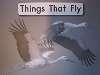 Things That Fly (Fountas and Pinnell Leveled Literacy Intervention Books, Blue System, Level B, Book 2)