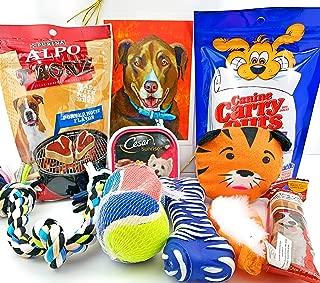 send dog gift basket