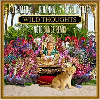 Wild Thoughts (NOTD Dance Remix) [Explicit]