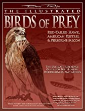 Illustrated Birds of Prey: Red-Tailed Hawk, American Kestral, & Peregrine Falcon: The Ultimate Reference Guide for Bird Lo...
