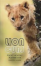 Lion Cubs Weekly Planner 2018: 16 Month Calendar