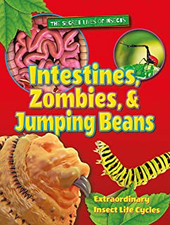 Intestines, Zombies, and Jumping Beans: Extraordinary Insect Life Cycles