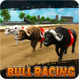 Crazy super bull race 2019-Bull Racing Game 2019