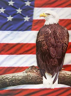 BALD EAGLE 3D UNFRAMED Holographic Wall Art-Lenticular Technology Causes The Artwork To Have Depth and Move-HOLOGRAM Style Images-HOLOGRAPHIC Optical Illusions By THOSE FLIPPING PICTURES