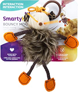 SmartyKat Interactive and Wand Cat Toys
