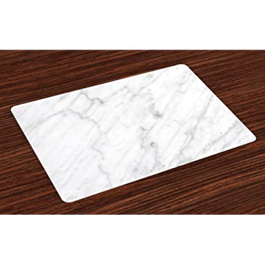 Ambesonne Marble Place Mats Set of 4, Carrara Marble Tile Surface Organic Style Granite Model Modern Design, Washable Fabric Placemats for Dining Room Kitchen Table Decor, Grey White