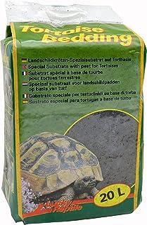 Amazon.es: terrario tortugas