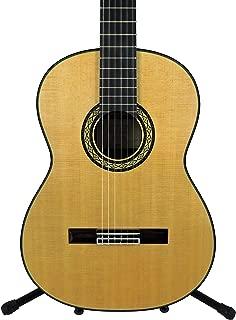 takamine hirade guitars