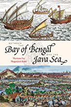Between the Bay of Bengal and the Java Sea: Trade Routes, Ancient Ports and Cultural Commonalities in Southeast Asia