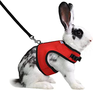 Niteangel Adjustable Soft Harness Elastic Leash Rabbits