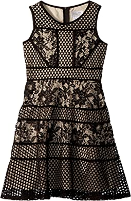Lace and Mesh Fit and Flare Dress (Big Kids)
