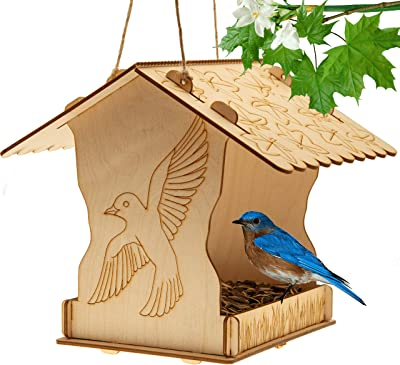 Wessy DIY Outdoor Bird Feeder - Eco-Friendly Wooden Birdfeeder with Seed Tray - Paintable Family-Fun Activity for Boys and Girls