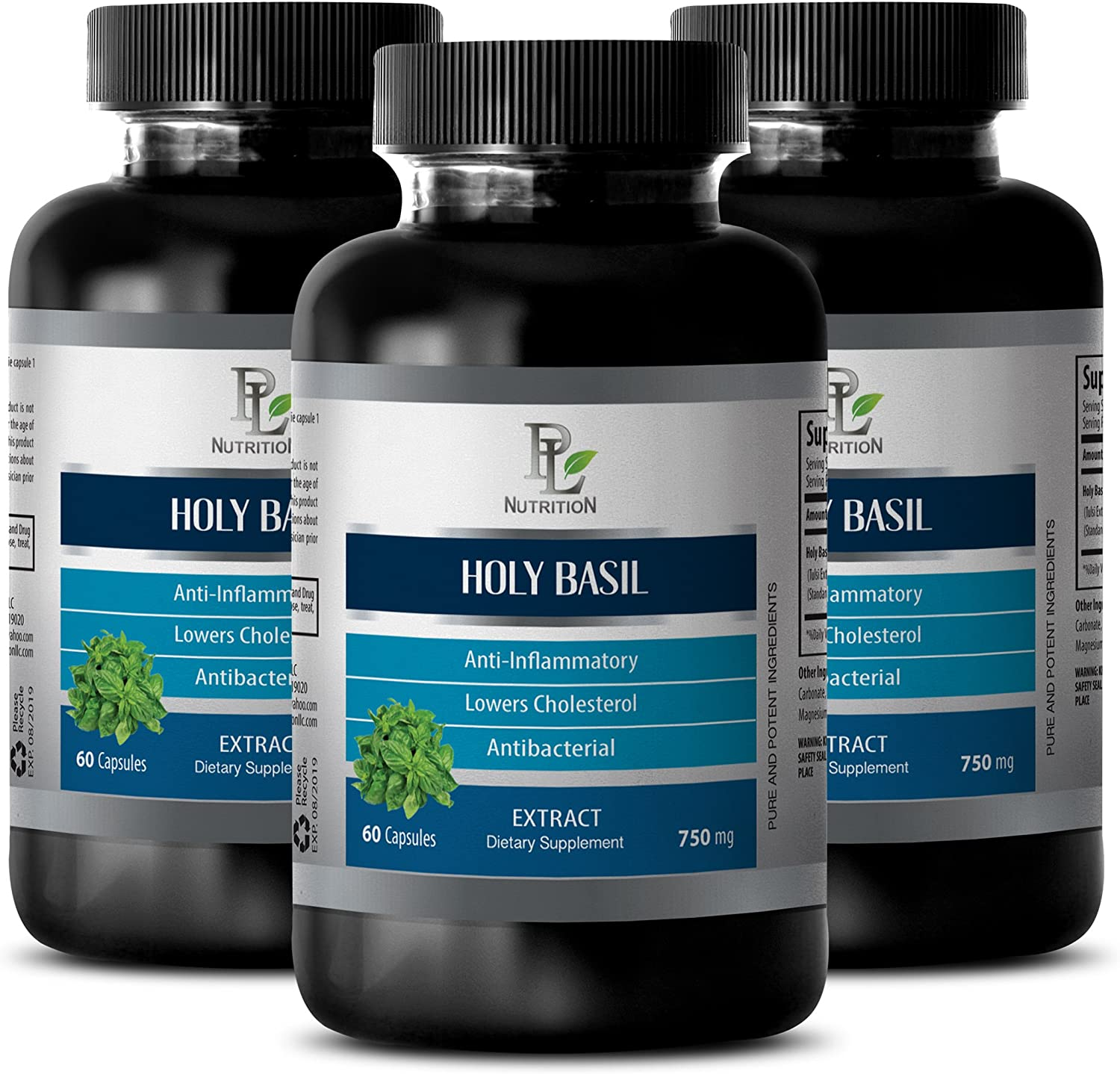 Immune System Supplement Excellence and Limited time cheap sale Energy HOLY Basil Extract Dietar -