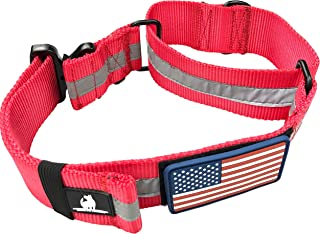 Diezel Pet Products Martingale Large Dog Flat Collars Big Breeds XL Dogs Rugged 2