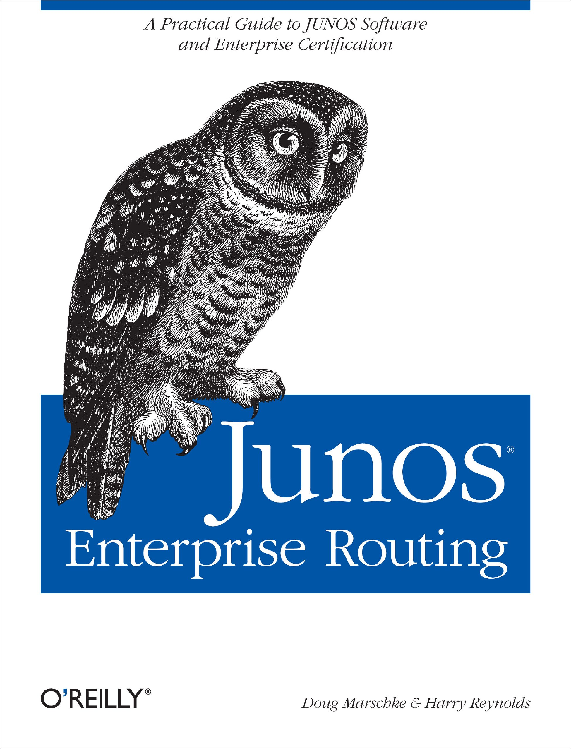 JUNOS Enterprise Routing: A Practical Guide To JUNOS Software And Enterprise Certification (English Edition)