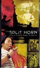 The Split Horn: Life of a Hmong Shaman in America