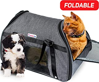 custom pet carrier