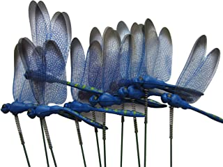 Best dragonfly plant stakes Reviews
