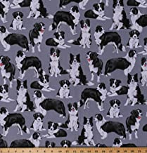 Cotton Border Collies Herding Dogs Puppies Animals Canine on Gray Cotton Fabric Print by The Yard (D754.04)