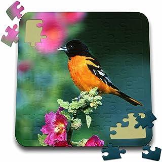 ab5bc632d35cf Amazon.com: baltimore puzzle - 3dRose