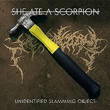 Unidentified Slamming Object [Explicit]