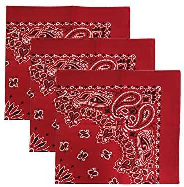 USA Made Military Army Trainmen Paisley 22 / Hav A Hank Paisley Bandana Made in USA (Set of 3)