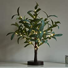 LITBLOOM Lighted Tabletop Olive Tree 18IN 50 LED with Timer Artificial Greenery Battery Operated for Wedding Party Holiday...