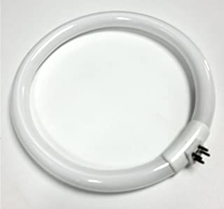 FC22T5/865 Outside PINS 22W 22 Watt 7.25 inch Diameter Circular Fluorescent lamp/Bulb for Magnifying Lamps