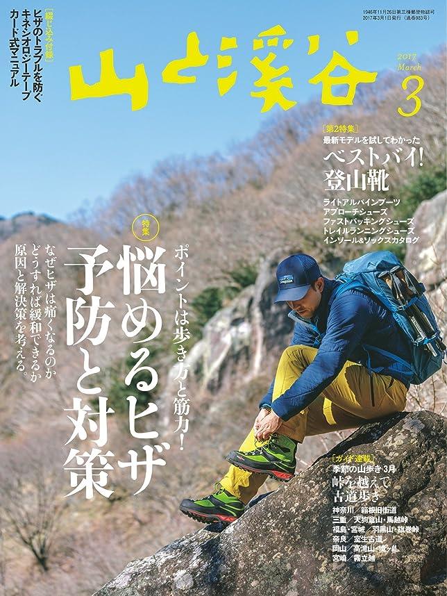 シンカン側溝肌山と溪谷 2017年 3月号 [雑誌]
