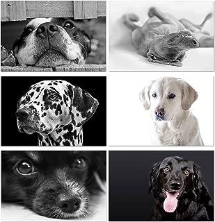 dog themed stationery