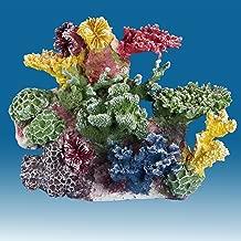 Best instant reef aquarium decorations Reviews