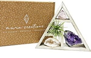"people crystals Mini Crystal + Air Plant Gift Set/Includes a 4.75"" Mini Display Shelf, Tillandsia Air Plant, Purple Amethyst Cluster, Raw Rose Quartz, and Clear Quartz Point, Home décor Accent."