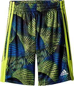 Amplified Net Shorts (Big Kids)