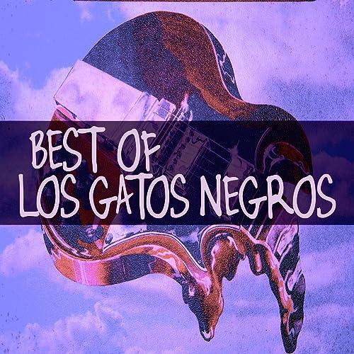 Todo Cambio by Los Gatos Negros & Frank Andrada on Amazon ...