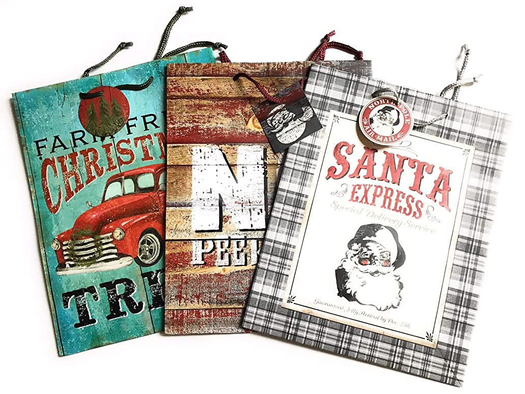 Christmas Gift Bags - Heavy Duty Gift Bags Perfect for Men - Various Designs and Sizes - Great Value (Large)