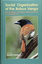 Social organization of the rufous vanga―The ecology of vangas‐birds endemic to Madagascar