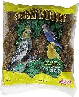 "Living World Spray Millet,17.6"". (Limited Edition)"