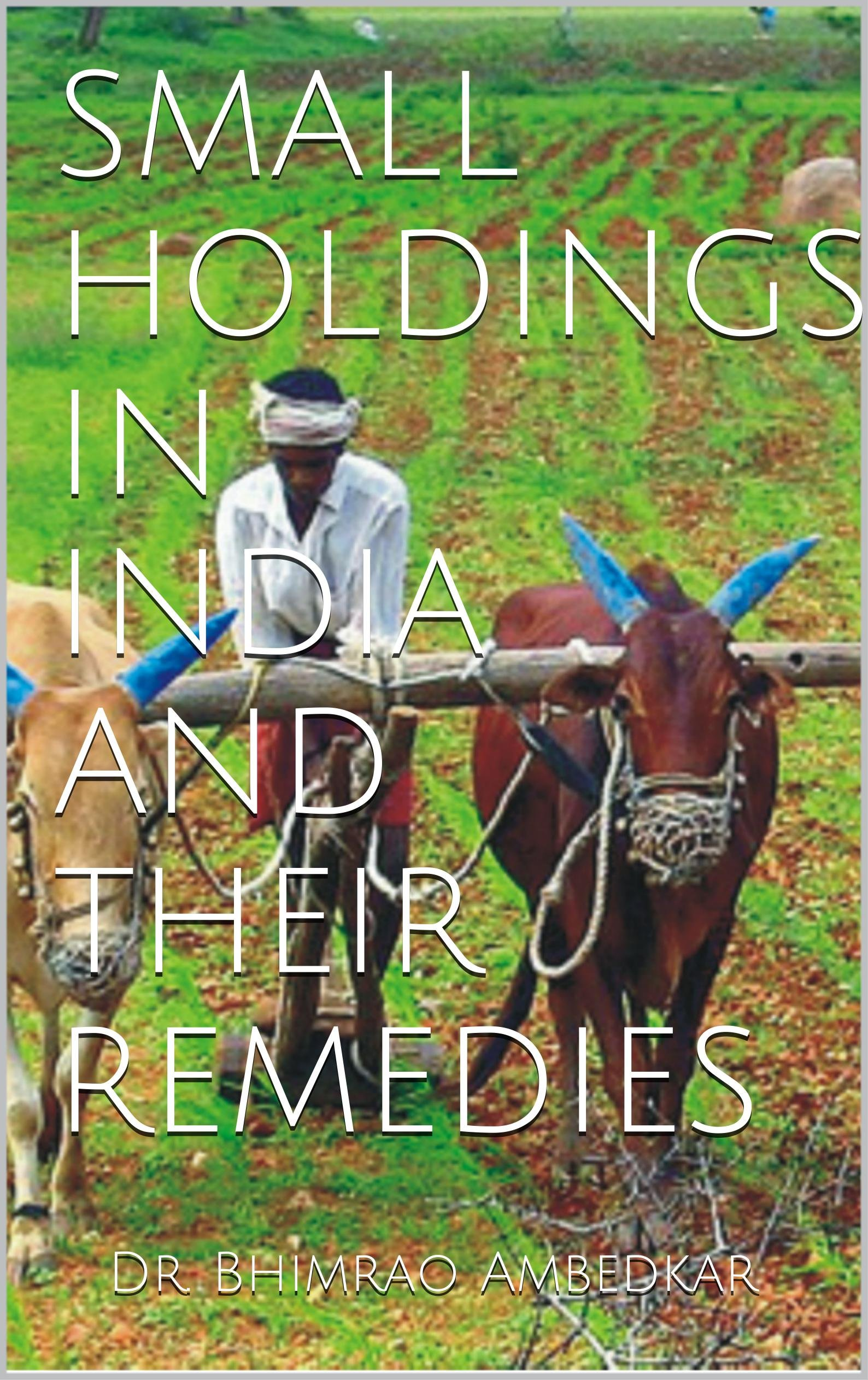 SMALL HOLDINGS IN INDIA AND THEIR REMEDIES