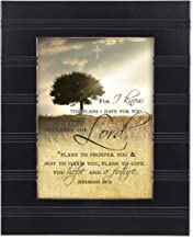 For I know the Plans I Have For You Jeremiah 29:11 Black 8 x 10 Sentimental Framed Art Plaque