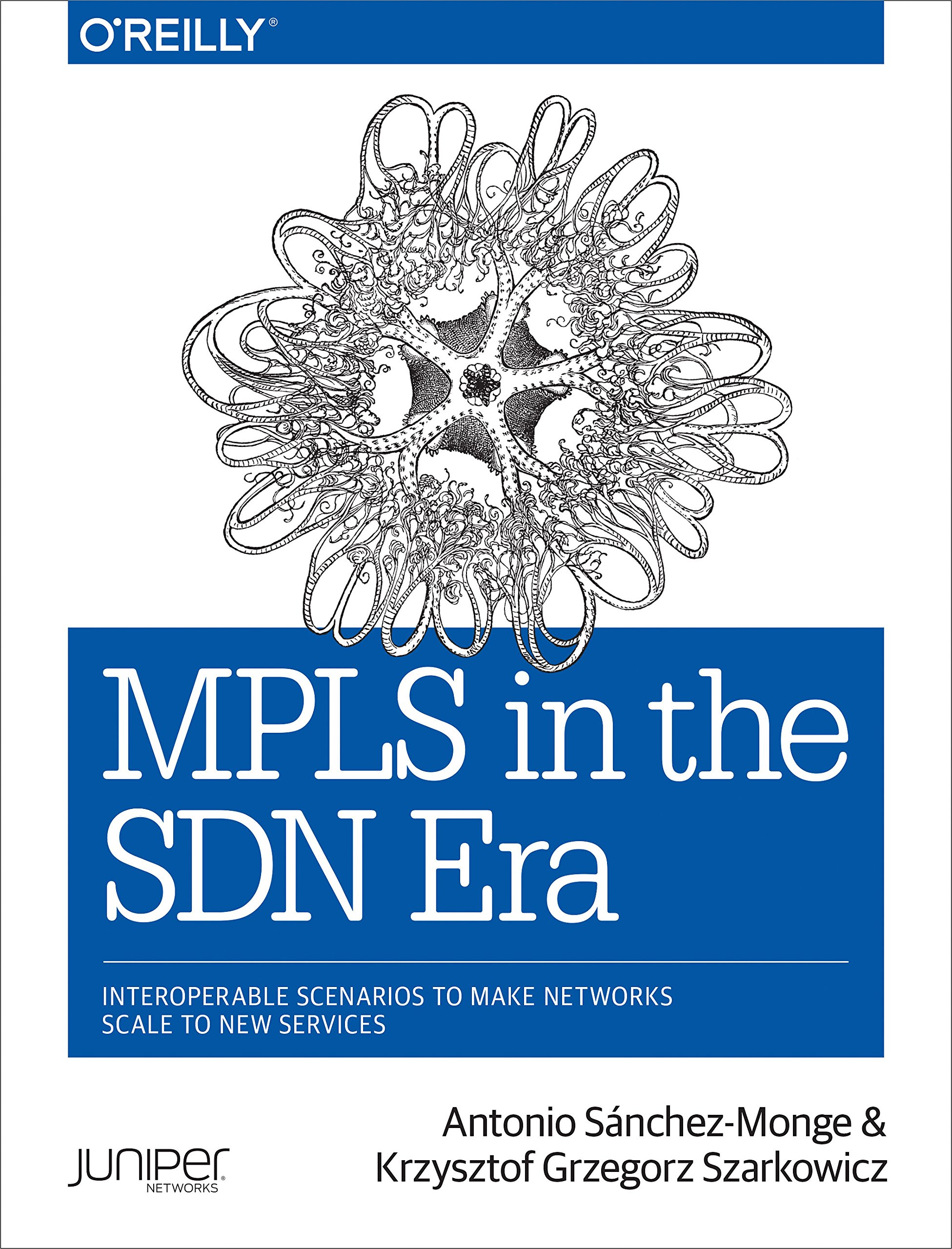 Download MPLS In The SDN Era 