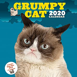 Grumpy Cat 2020 Wall Calendar: (Funny Gag Gift Yearly Calendar, Cat Lover s Present)