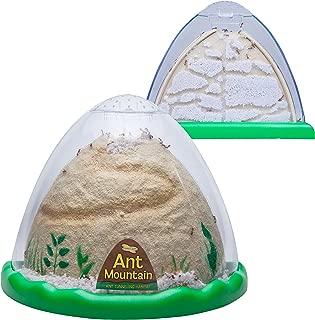 Best sand ant farm Reviews