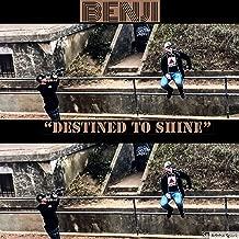 Destined to Shine [Explicit]