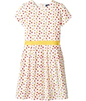 Toobydoo - Floral Belted Jersey Party Dress (Toddler/Little Kids/Big Kids)