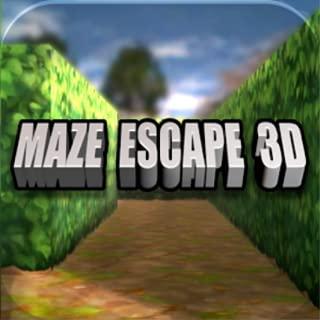 Maze Escape 3D - The Snow Maze
