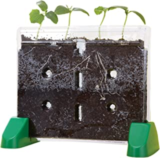 Best sprout and grow window Reviews