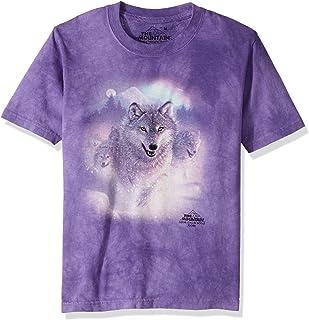 The Mountain Men's Northern Lights T-Shirt