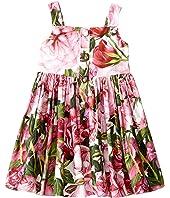 Dolce & Gabbana Kids - Rose Poplin Pleated Dress (Toddler/Little Kids)