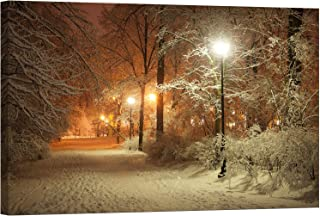lighted winter park canvas