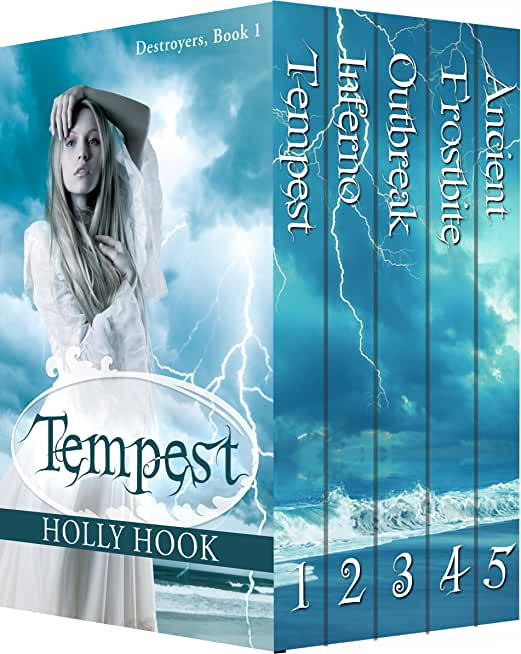 The Destroyers Series Box Set (Books 1-5) (English Edition)